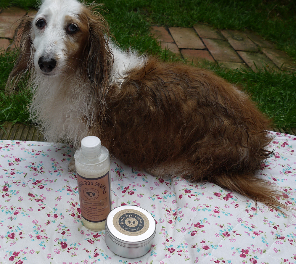 Poppy eyeing up our natural dog shampoo & paw salve